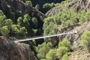 Puente colgante de El Saltillo